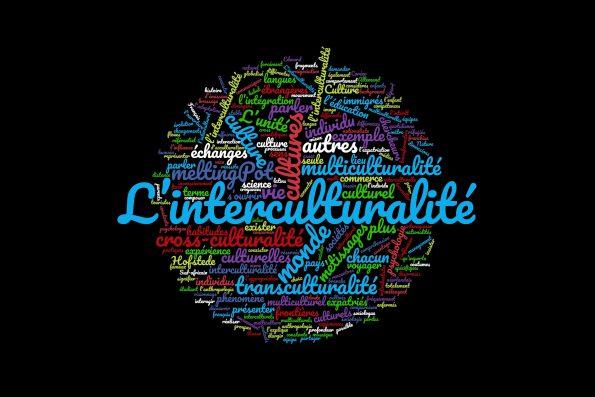 Mots qui illustrent la complexité de la notion de l'interculturalité