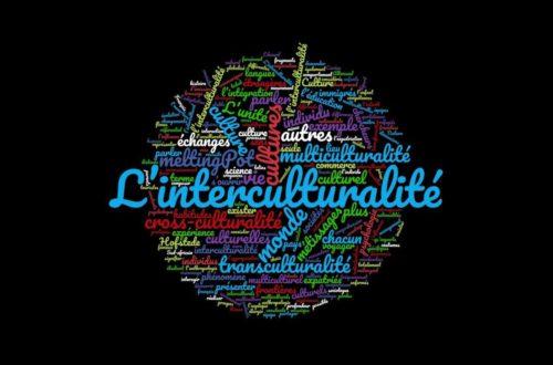 Article : L'interculturalité, c'est pour qui et pour quand ? Une idée de la France